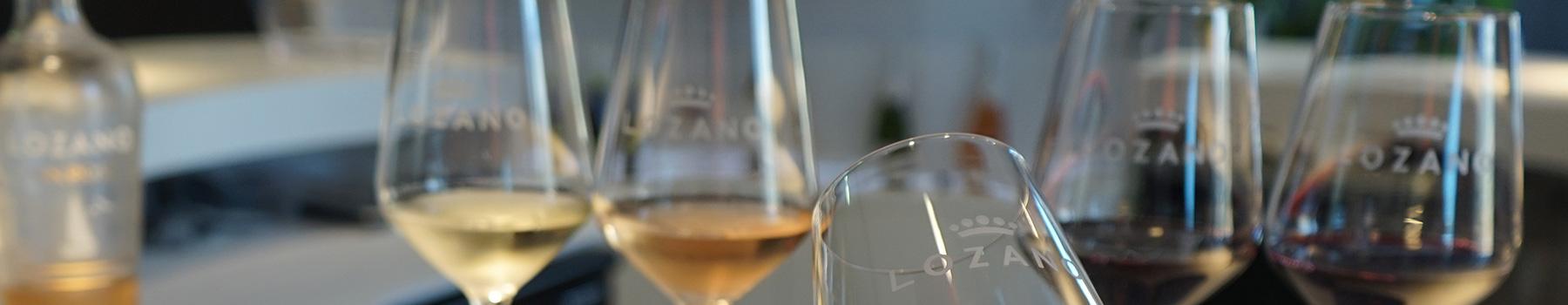 Enoturismo - Catas comentadas - Cata Lozano de 4 vinos - Bodegas Lozano